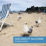 goelands_salicorne_RVB_c_500