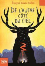de-lautre-co%cc%82te-du-ciel